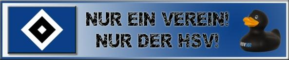 HSV_Header Kopie