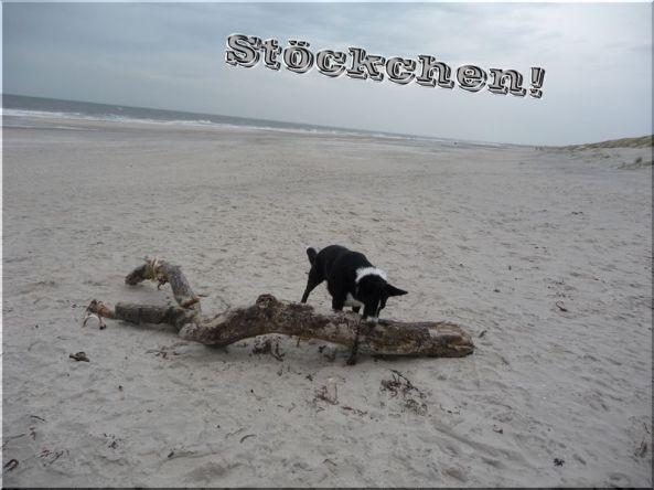 stc3b6ckchen_2