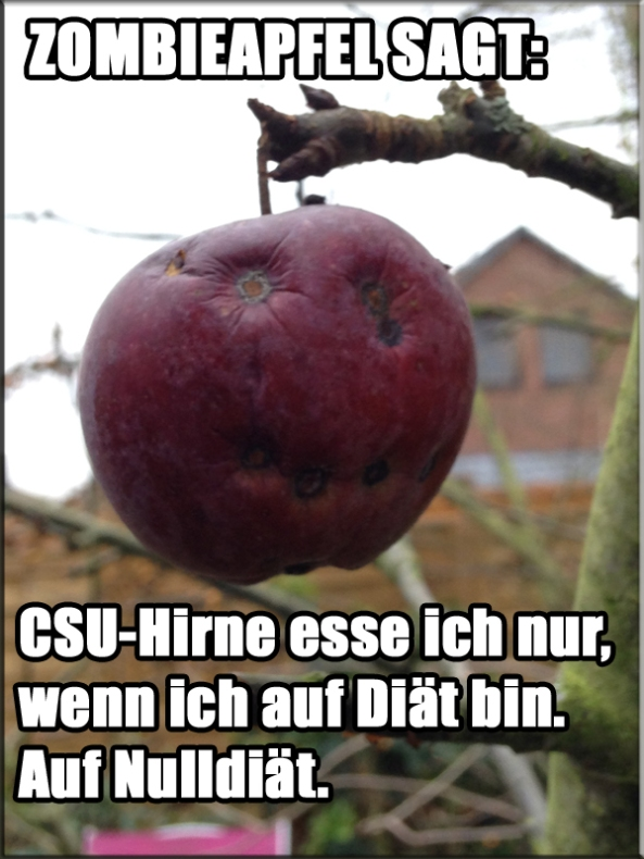 CSU-Diät